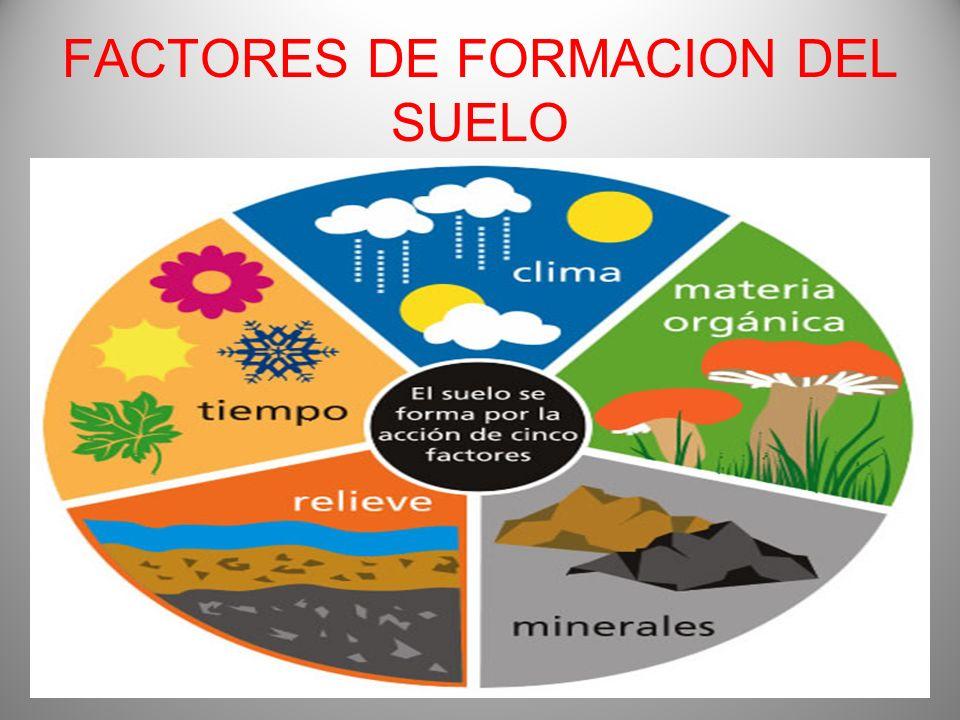 Ing m a f lix fuentes quijandria consultor agr cola y for Como se forma y desarrolla el suelo