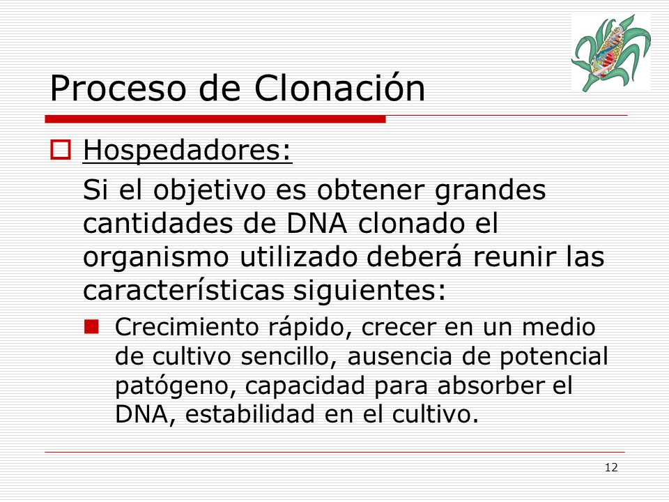 Proceso de Clonación Hospedadores: