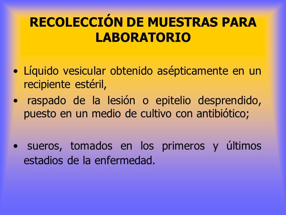 RECOLECCIÓN DE MUESTRAS PARA LABORATORIO