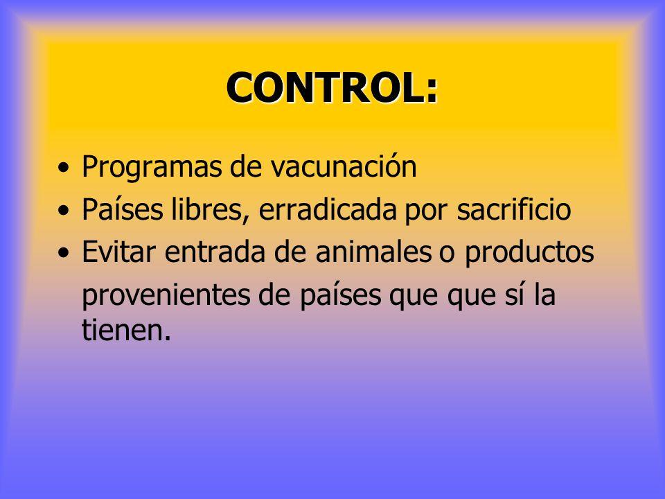 CONTROL: Programas de vacunación