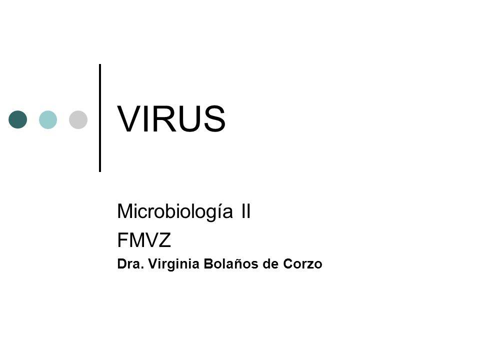 Microbiología II FMVZ Dra. Virginia Bolaños de Corzo