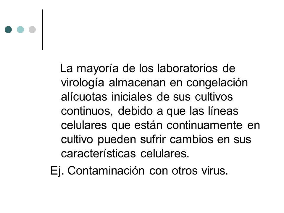 La mayoría de los laboratorios de virología almacenan en congelación alícuotas iniciales de sus cultivos continuos, debido a que las líneas celulares que están continuamente en cultivo pueden sufrir cambios en sus características celulares.