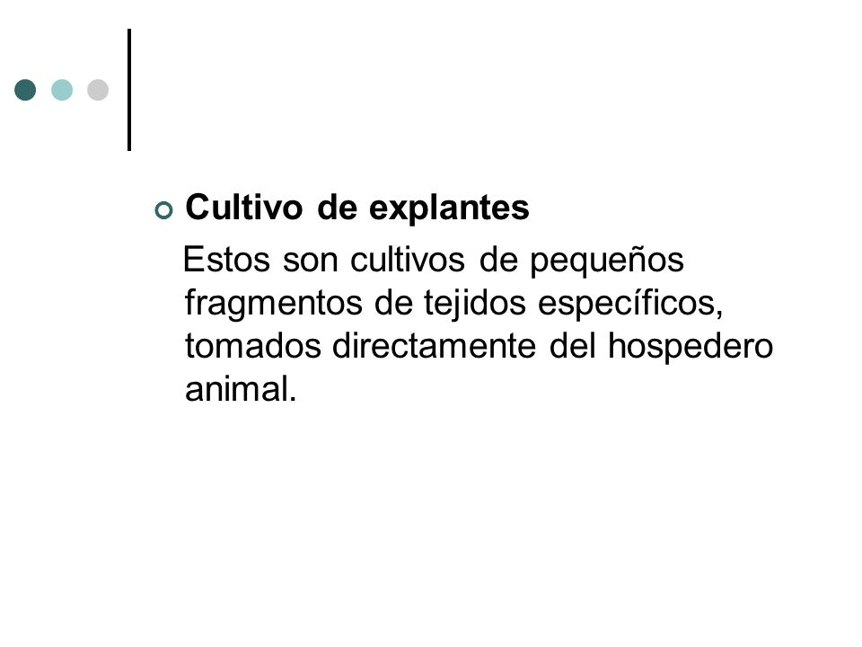 Cultivo de explantes Estos son cultivos de pequeños fragmentos de tejidos específicos, tomados directamente del hospedero animal.