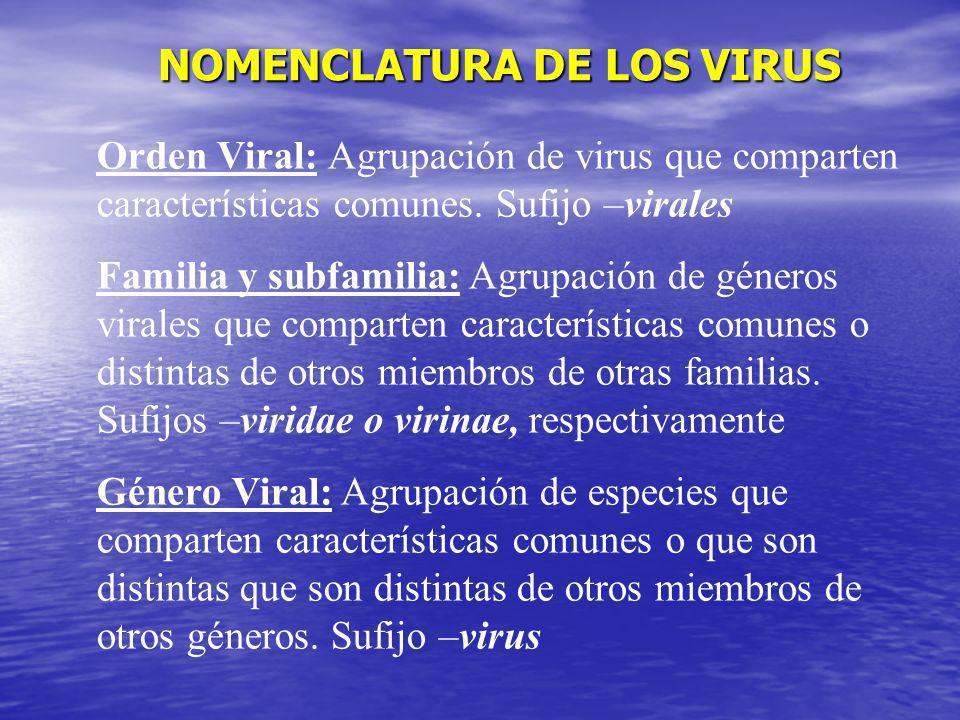 NOMENCLATURA DE LOS VIRUS
