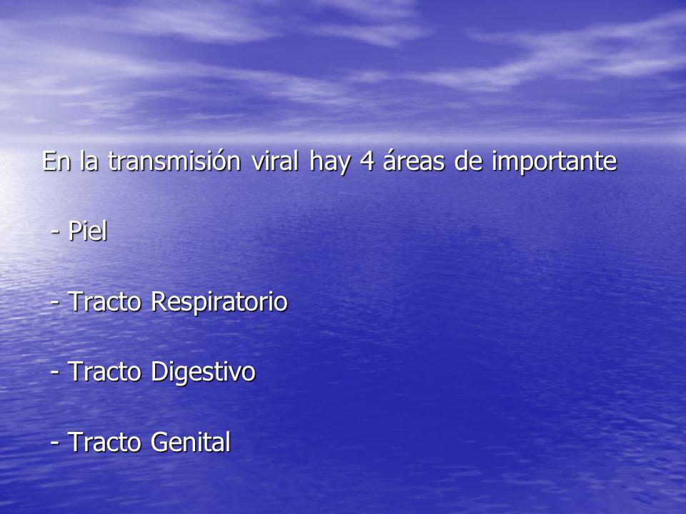 En la transmisión viral hay 4 áreas de importante