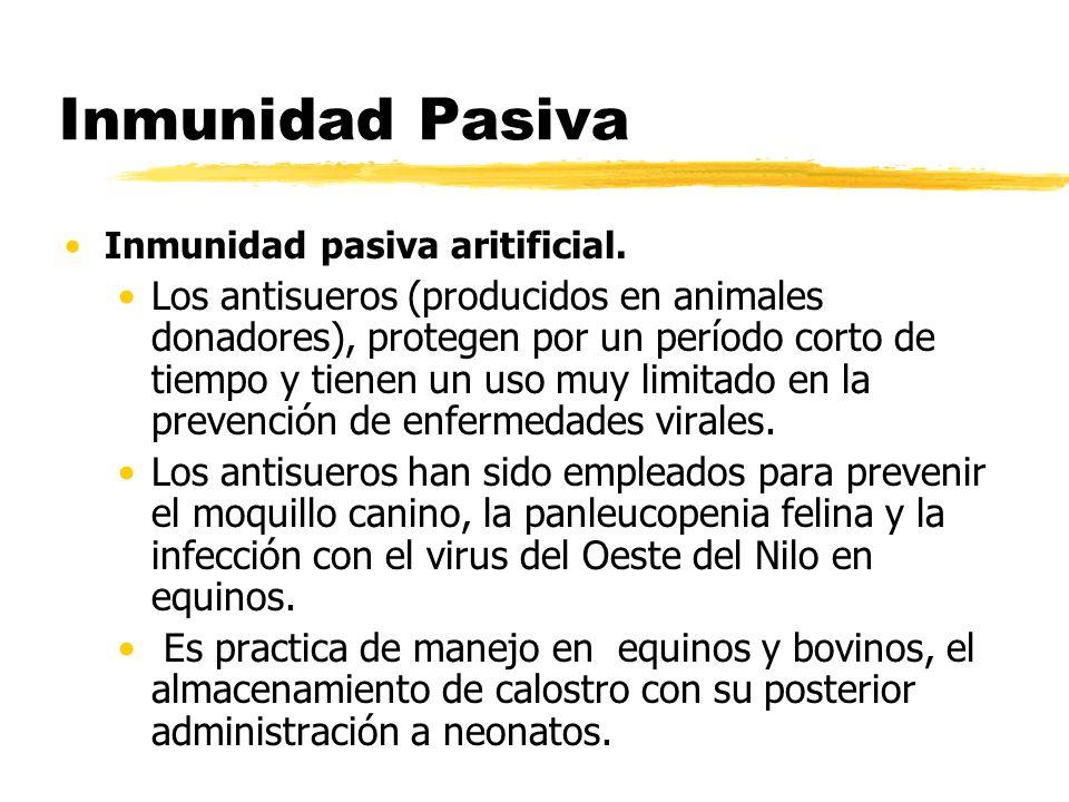 Inmunidad PasivaInmunidad pasiva aritificial.