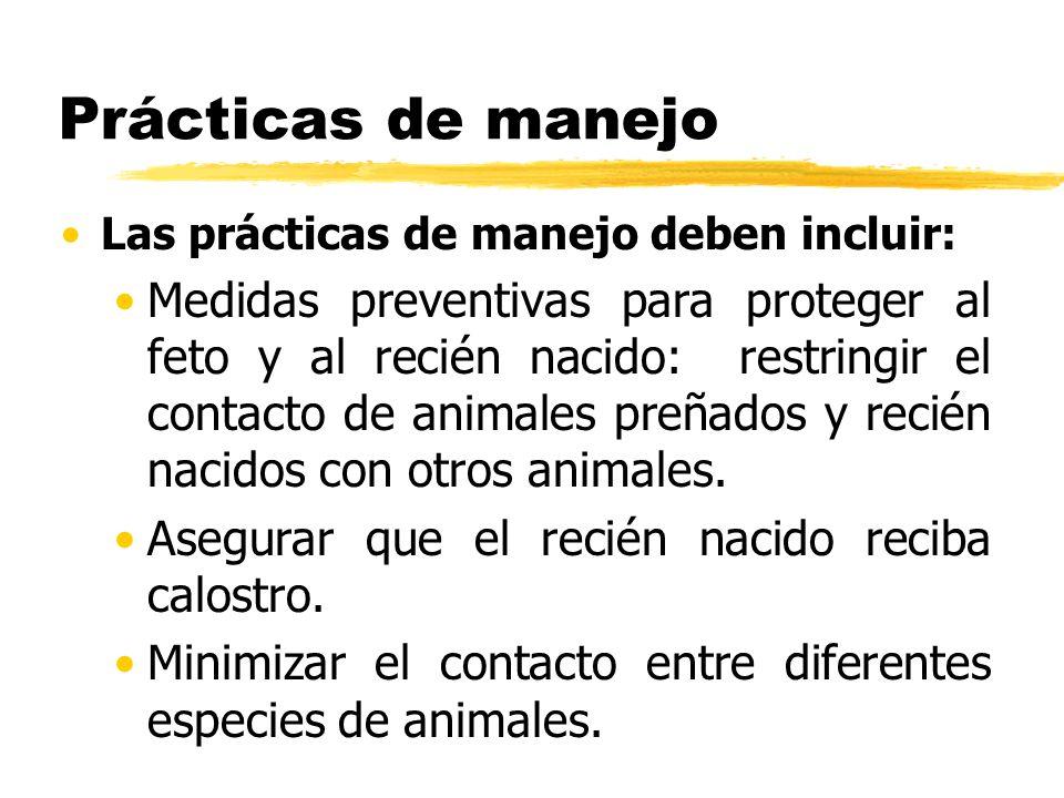 Prácticas de manejo Las prácticas de manejo deben incluir: