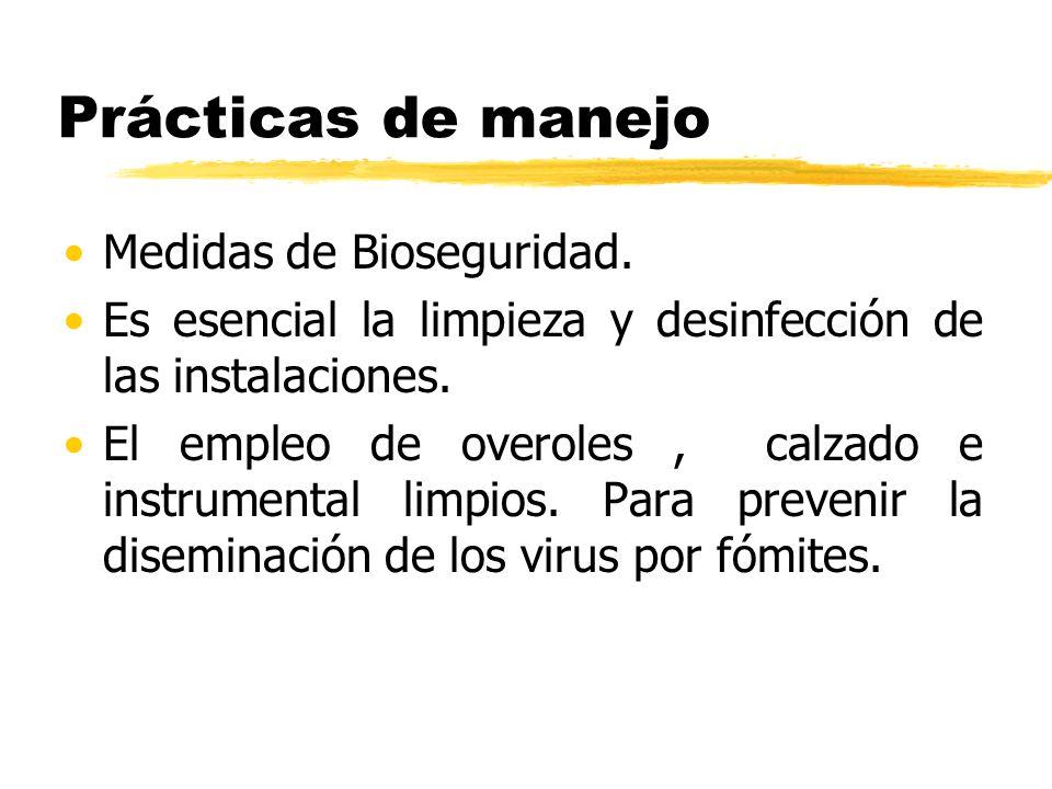 Prácticas de manejo Medidas de Bioseguridad.
