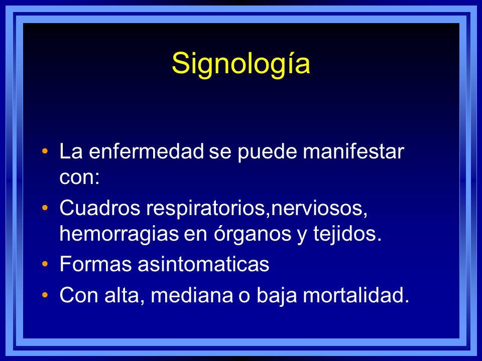 Signología La enfermedad se puede manifestar con: