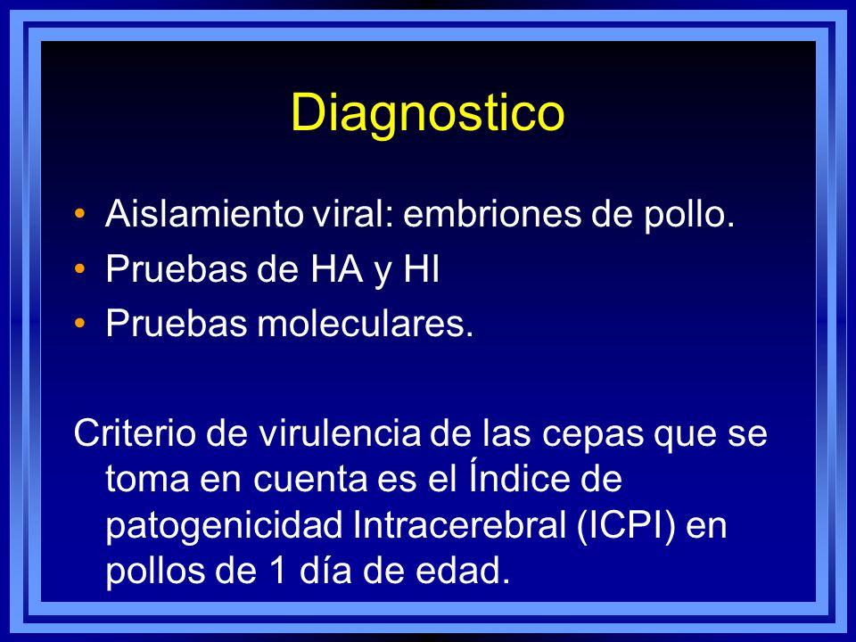 Diagnostico Aislamiento viral: embriones de pollo. Pruebas de HA y HI