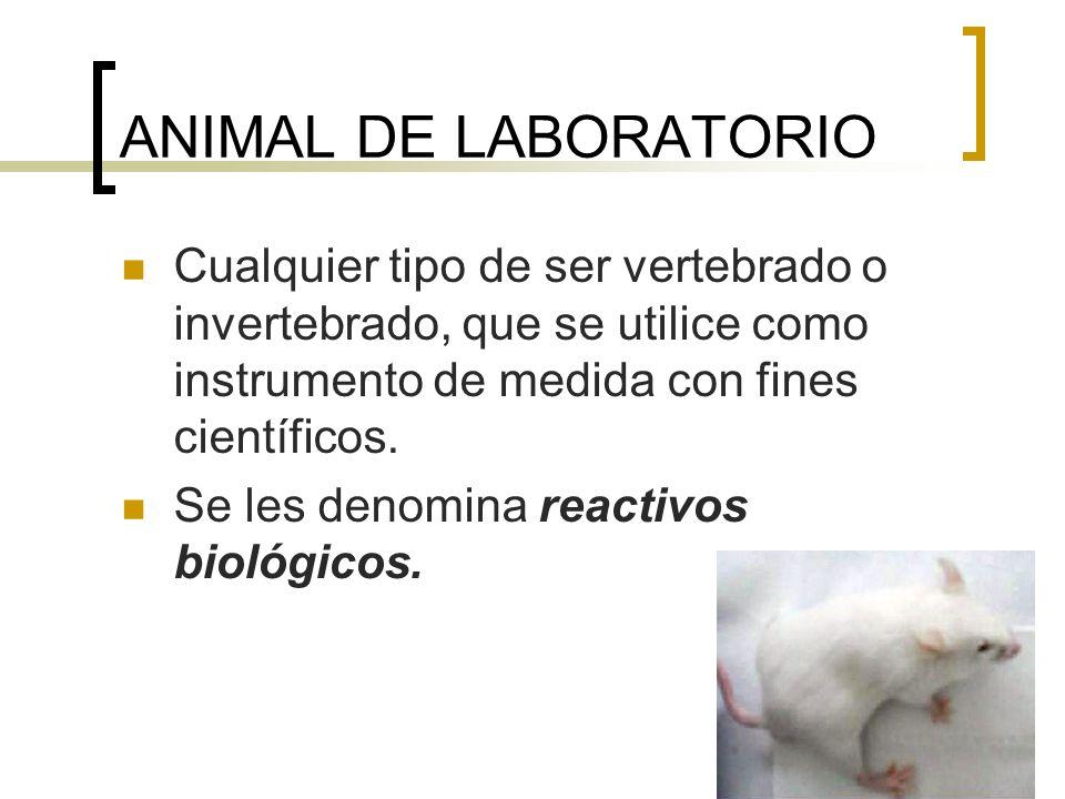 ANIMAL DE LABORATORIOCualquier tipo de ser vertebrado o invertebrado, que se utilice como instrumento de medida con fines científicos.