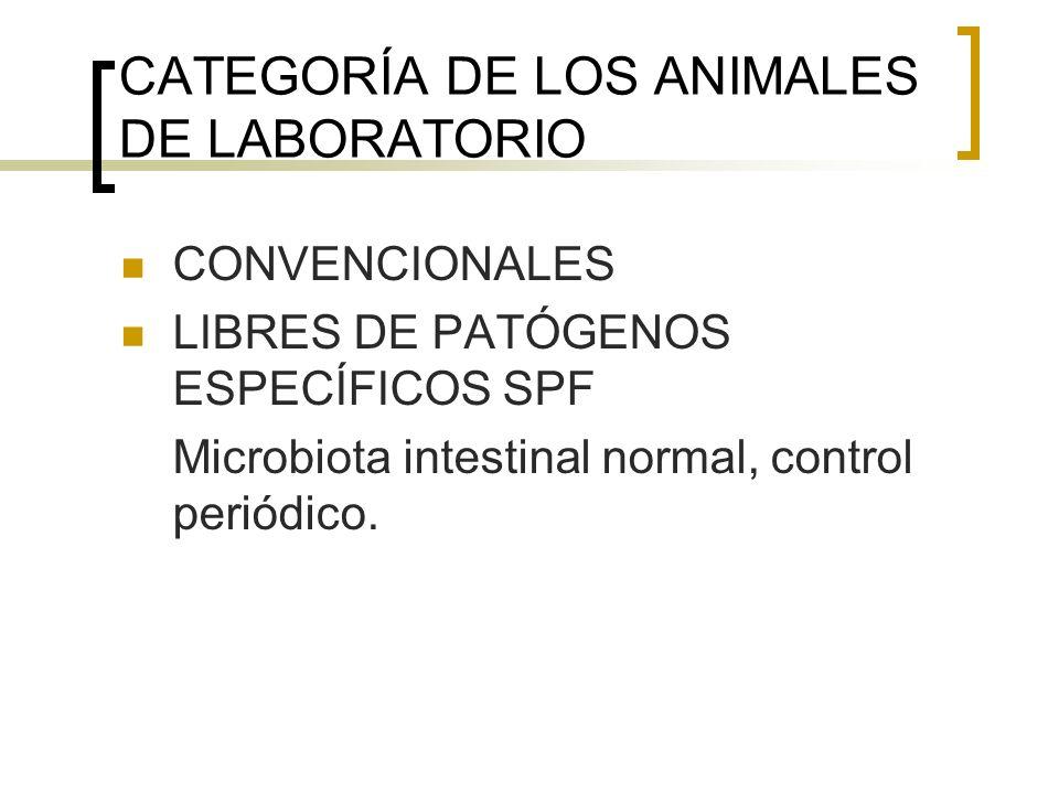 CATEGORÍA DE LOS ANIMALES DE LABORATORIO