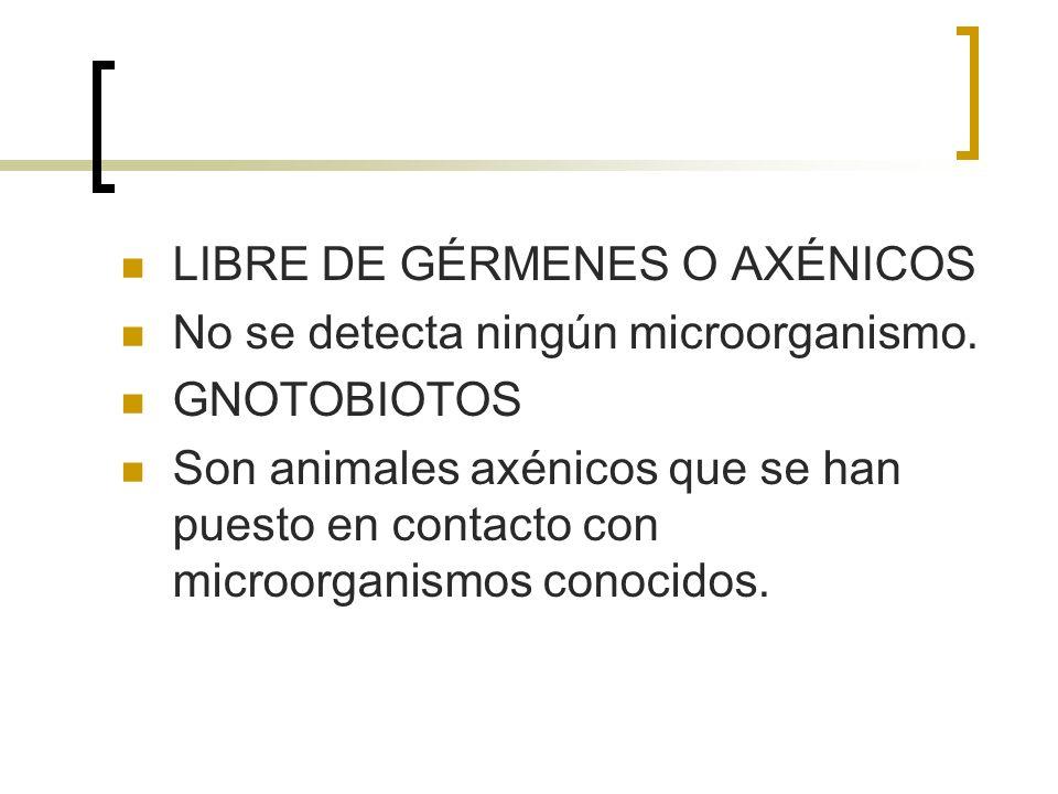 LIBRE DE GÉRMENES O AXÉNICOS