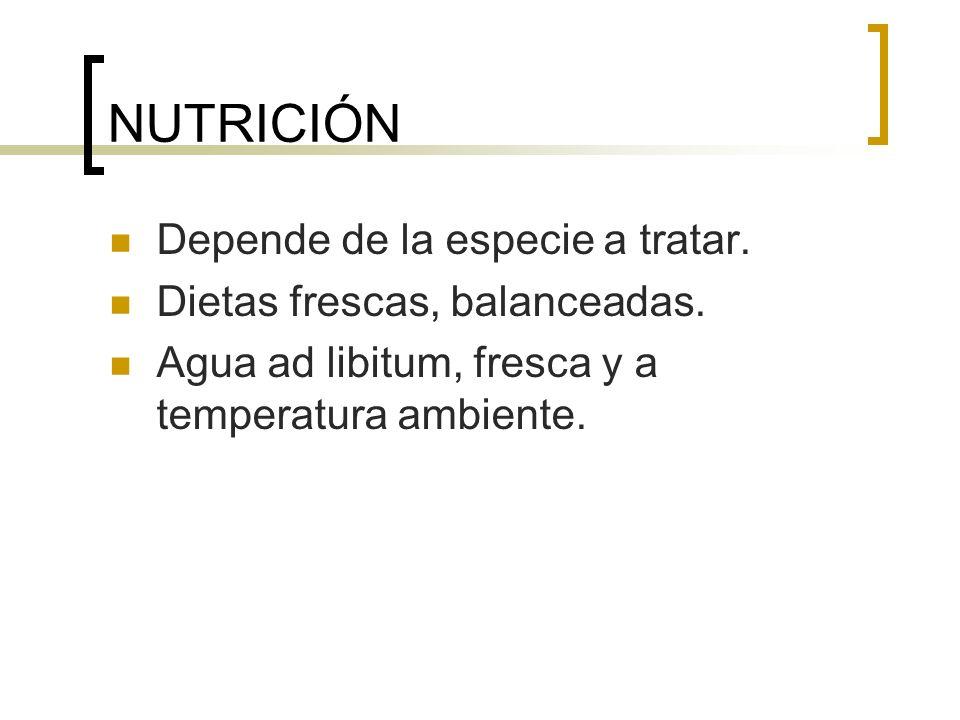 NUTRICIÓN Depende de la especie a tratar. Dietas frescas, balanceadas.