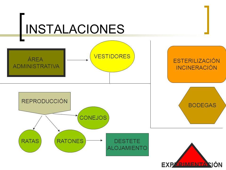INSTALACIONES EXPERIMENTACIÓN VESTIDORES ESTERILIZACIÓN INCINERACIÓN