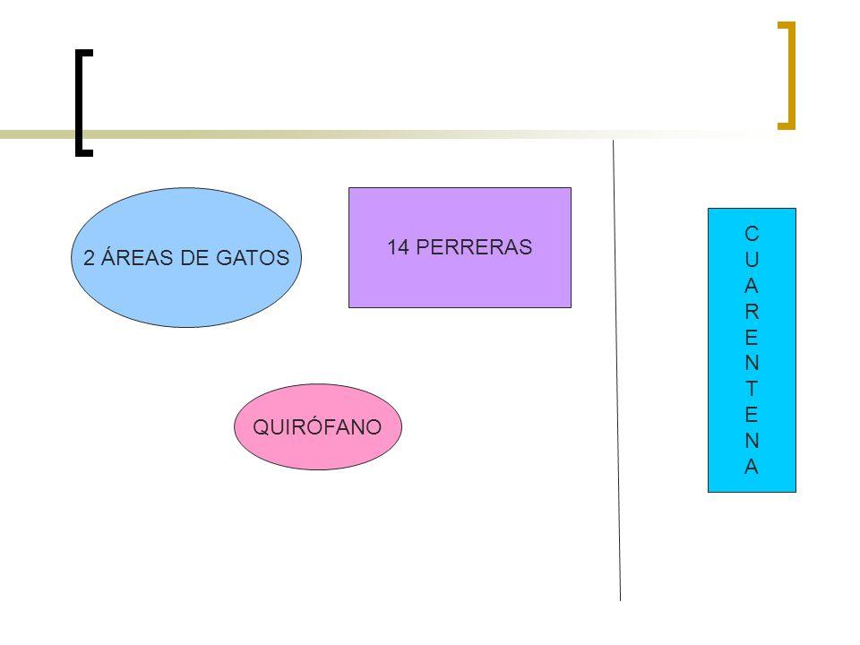 2 ÁREAS DE GATOS 14 PERRERAS C U A R E N T QUIRÓFANO