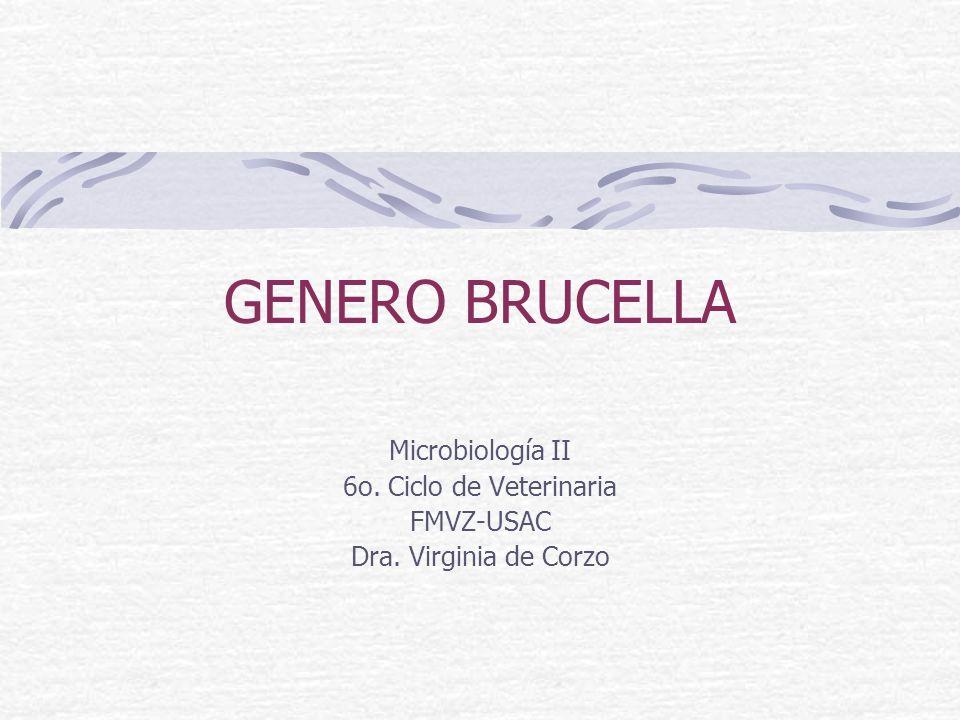 GENERO BRUCELLA Microbiología II 6o. Ciclo de Veterinaria FMVZ-USAC