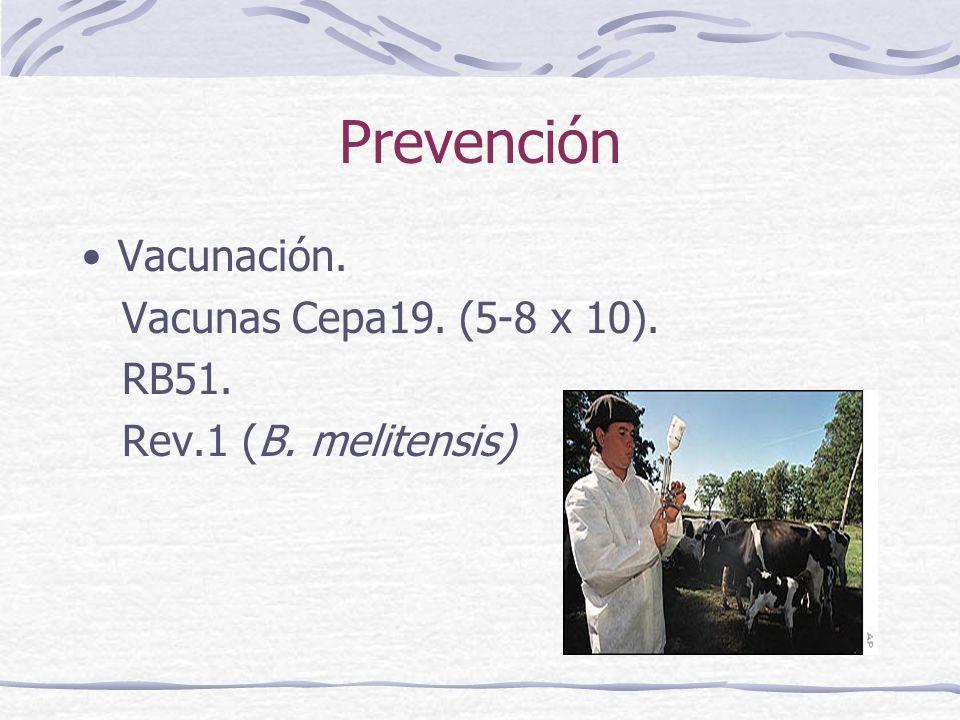 Prevención Vacunación. Vacunas Cepa19. (5-8 x 10). RB51.