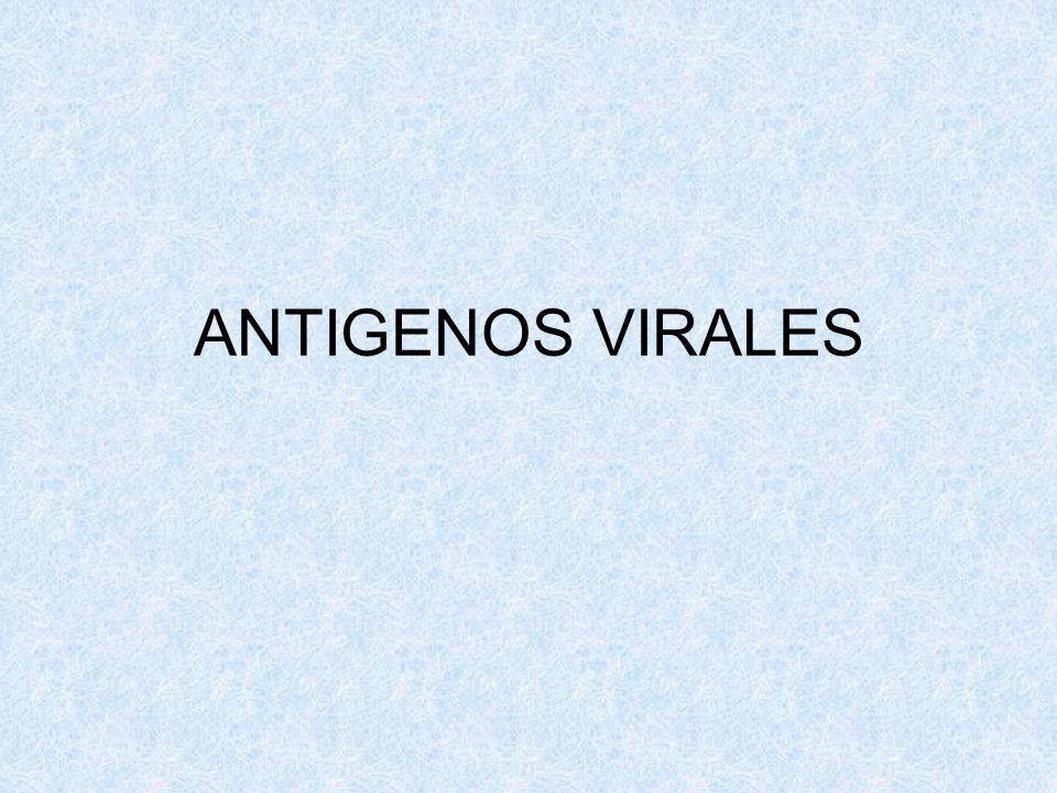 ANTIGENOS VIRALES
