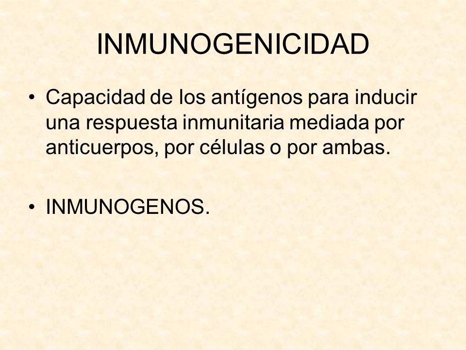 INMUNOGENICIDAD Capacidad de los antígenos para inducir una respuesta inmunitaria mediada por anticuerpos, por células o por ambas.
