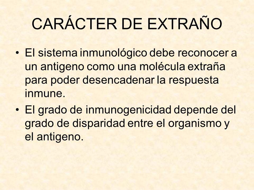 CARÁCTER DE EXTRAÑOEl sistema inmunológico debe reconocer a un antigeno como una molécula extraña para poder desencadenar la respuesta inmune.