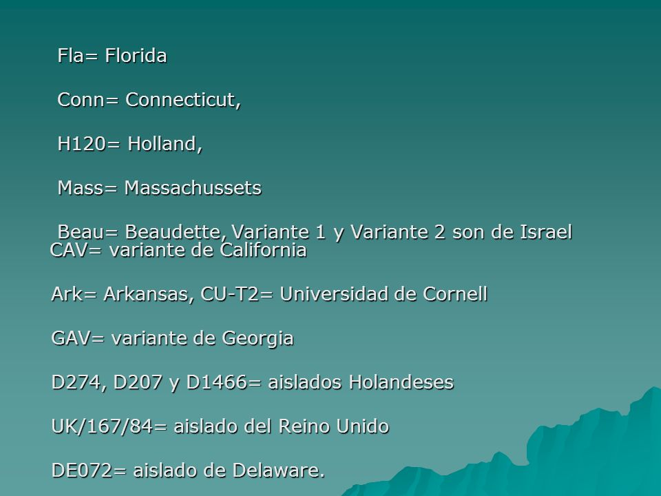 Fla= FloridaConn= Connecticut, H120= Holland, Mass= Massachussets.
