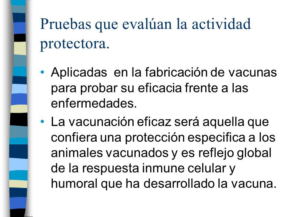 Pruebas que evalúan la actividad protectora.