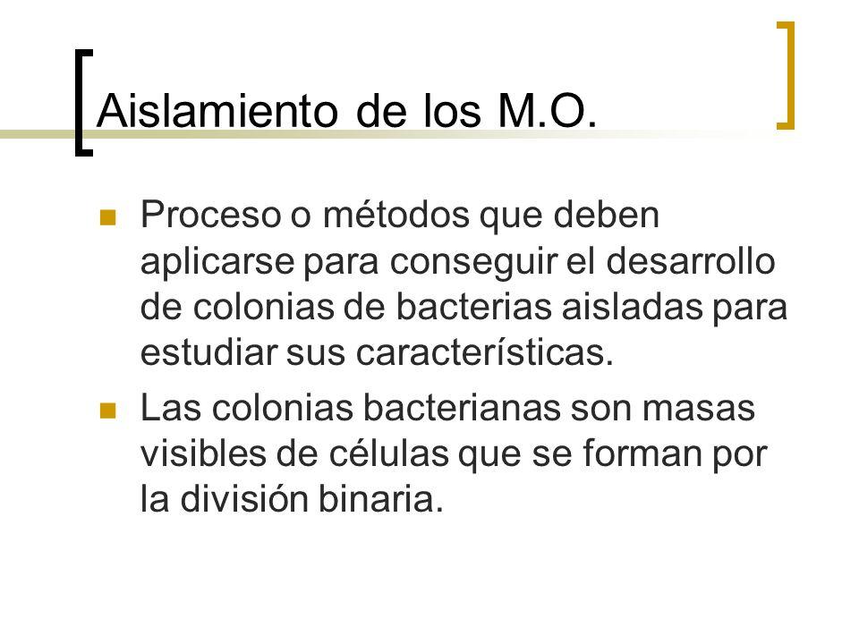 Aislamiento de los M.O.