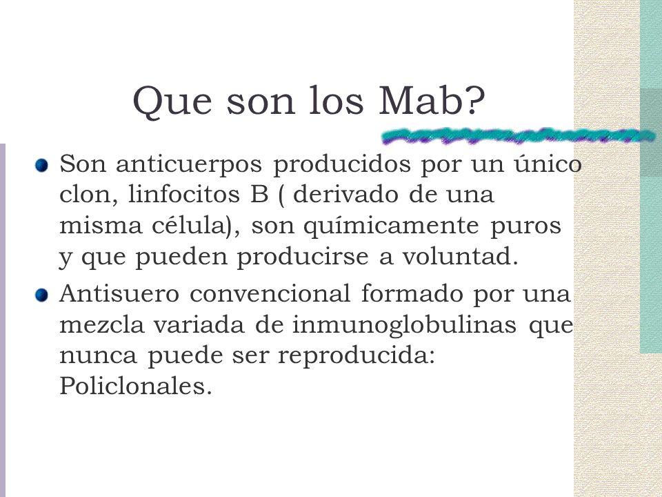 Que son los Mab