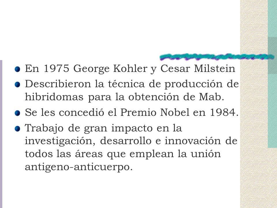 En 1975 George Kohler y Cesar Milstein