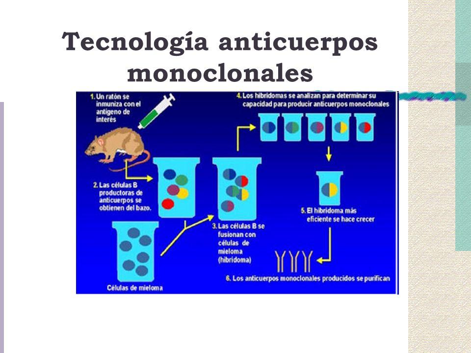 Tecnología anticuerpos monoclonales