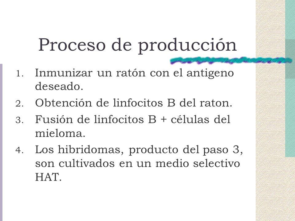 Proceso de producción Inmunizar un ratón con el antigeno deseado.
