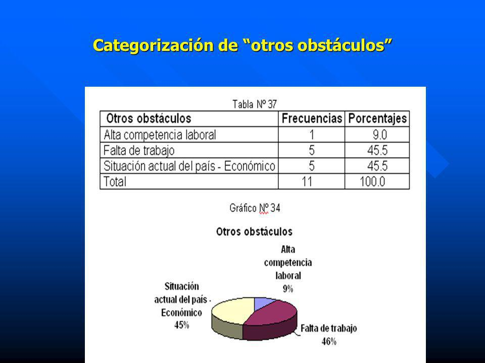 Categorización de otros obstáculos