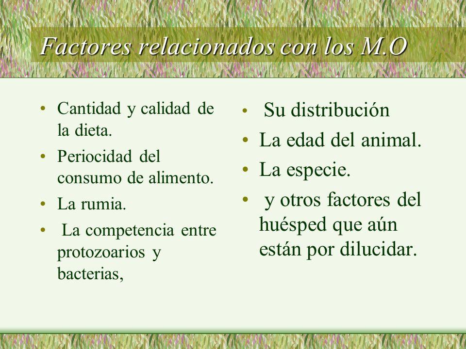Factores relacionados con los M.O