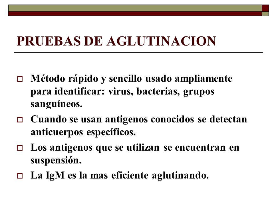 PRUEBAS DE AGLUTINACION