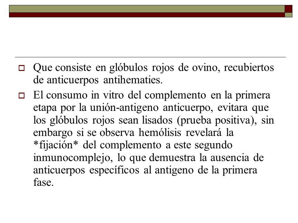 Que consiste en glóbulos rojos de ovino, recubiertos de anticuerpos antihematies.