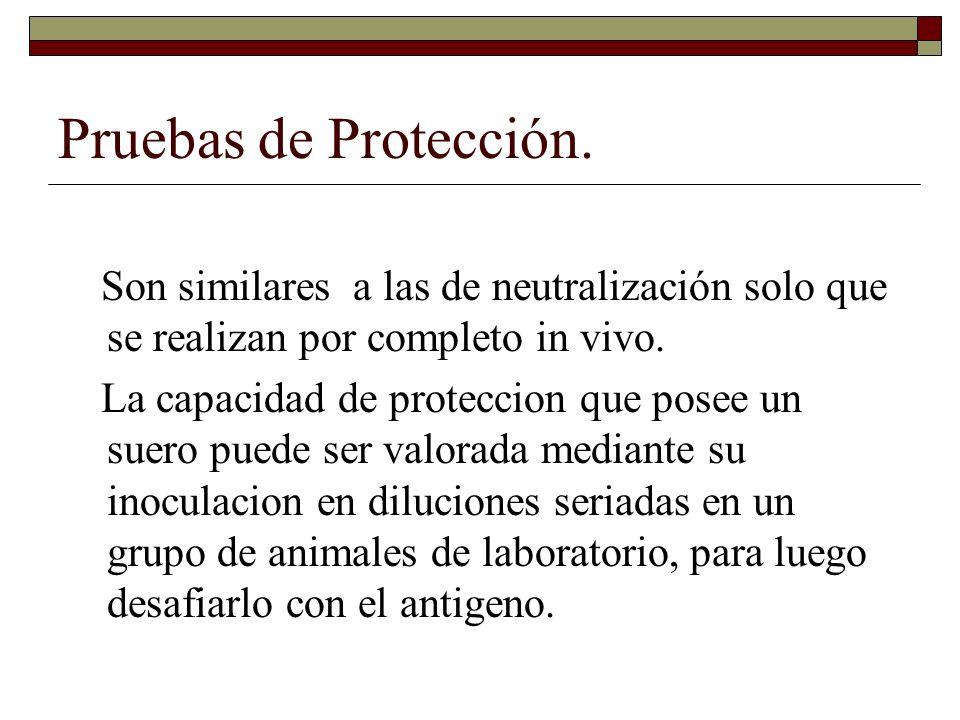 Pruebas de Protección. Son similares a las de neutralización solo que se realizan por completo in vivo.