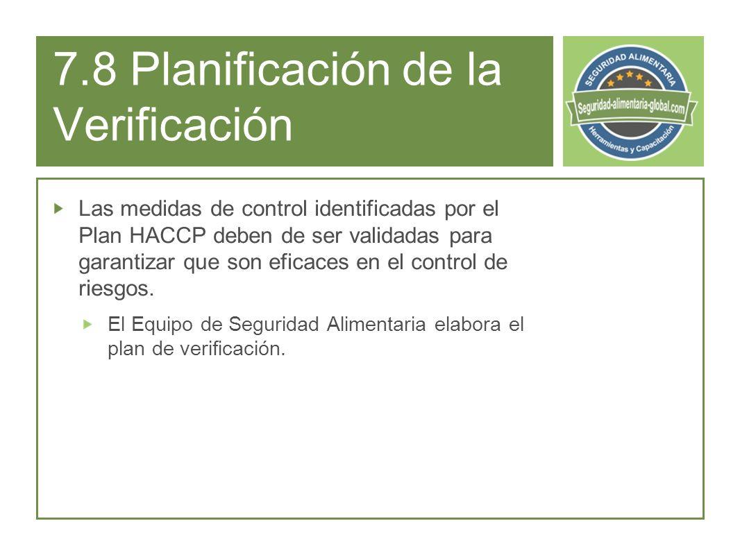 7.8 Planificación de la Verificación