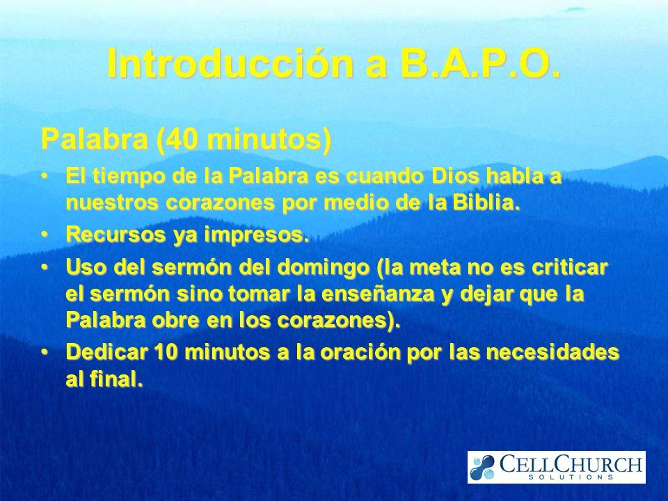 Introducción a B.A.P.O. Palabra (40 minutos)