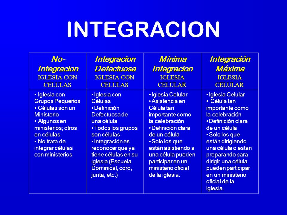 Integracion Defectuosa