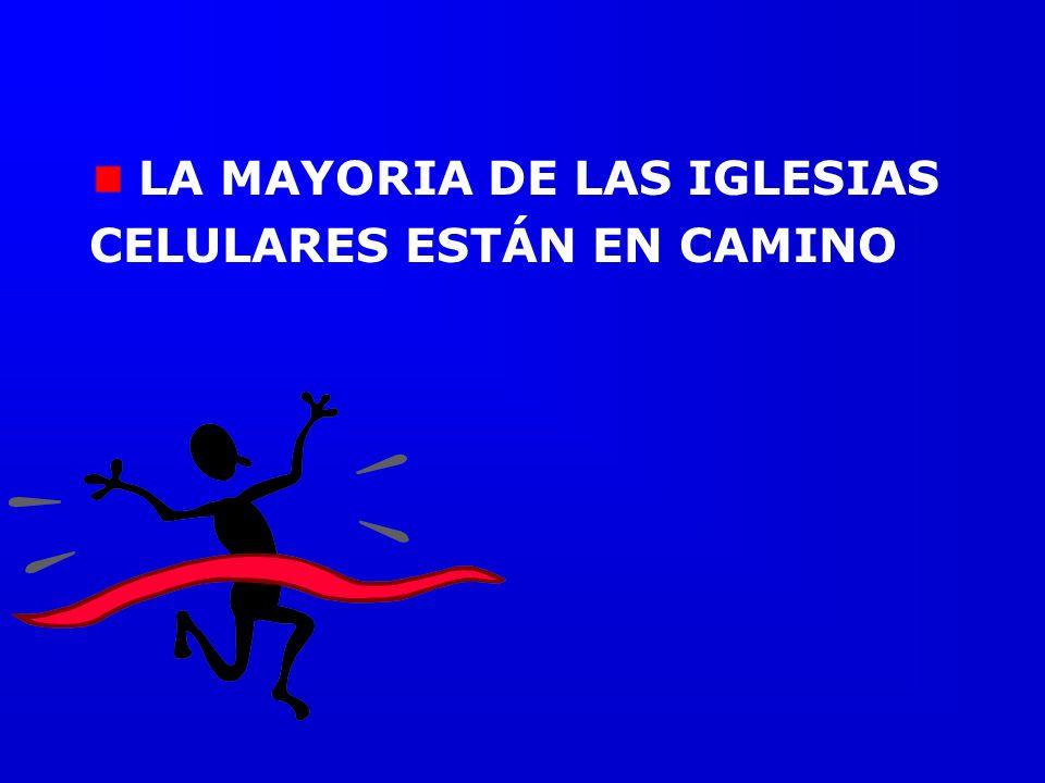 LA MAYORIA DE LAS IGLESIAS CELULARES ESTÁN EN CAMINO