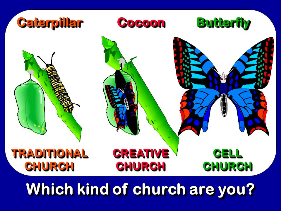 Which kind of church are you