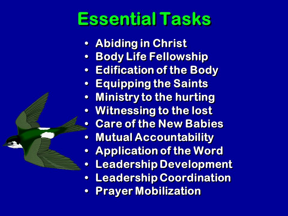 Essential Tasks Abiding in Christ Body Life Fellowship