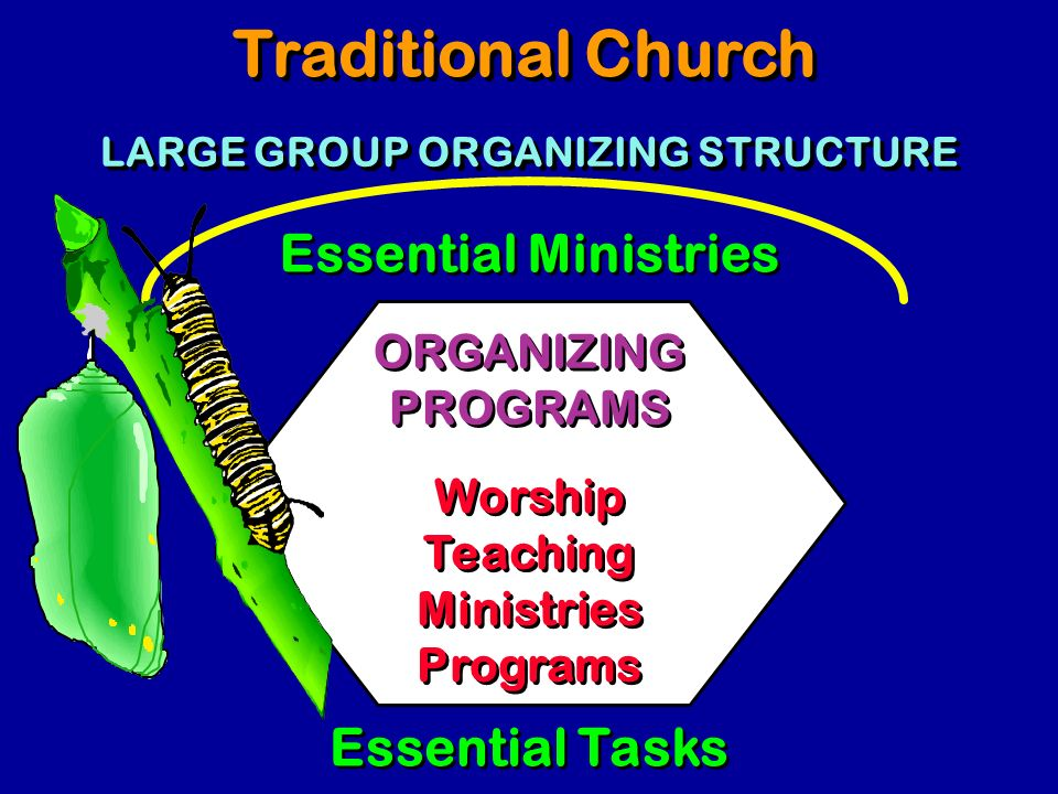 LARGE GROUP ORGANIZING STRUCTURE
