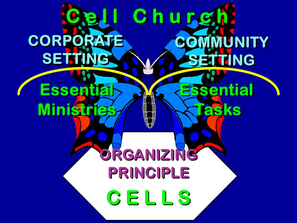 C e l l C h u r c h C E L L S Essential Ministries Essential Tasks