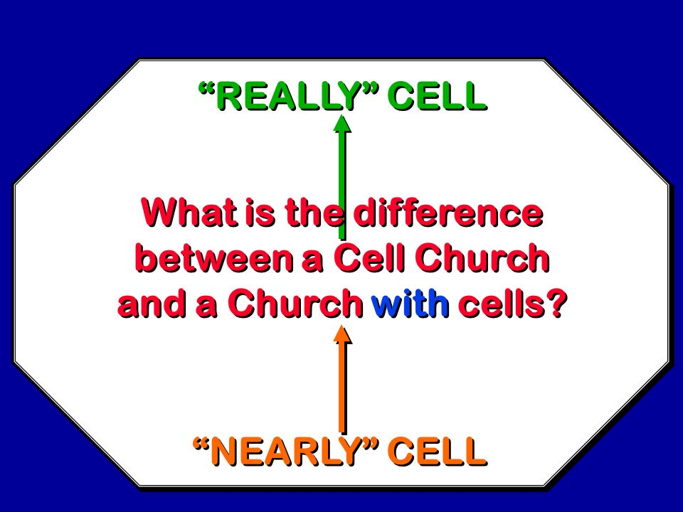 REALLY CELL What is the difference between a Cell Church and a Church with cells NEARLY CELL