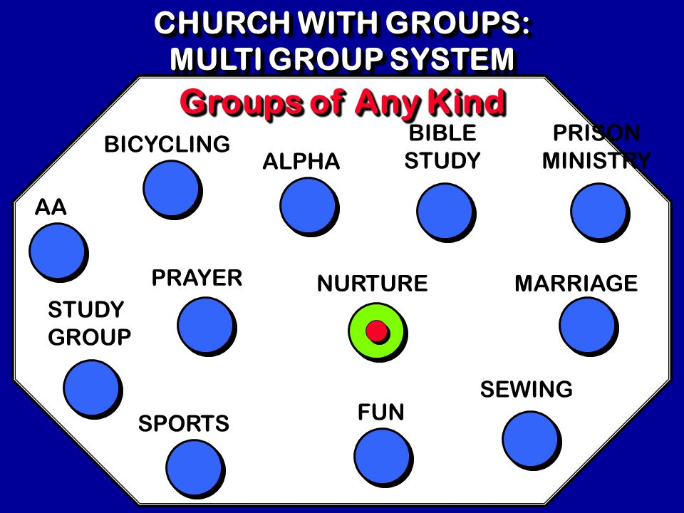 Groups of Any Kind CHURCH WITH GROUPS: MULTI GROUP SYSTEM BIBLE STUDY