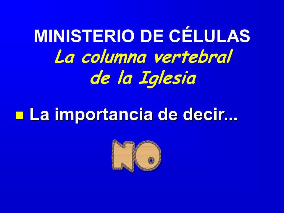 MINISTERIO DE CÉLULAS La columna vertebral de la Iglesia