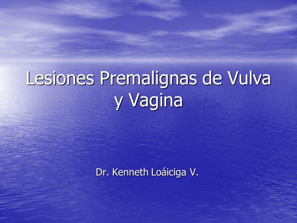 Lesiones Premalignas de Vulva y Vagina