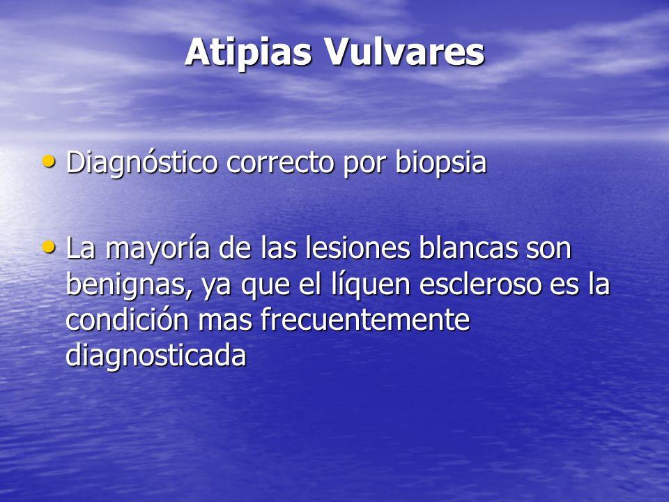 Atipias Vulvares Diagnóstico correcto por biopsia